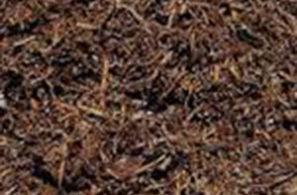 bellarine-worms-bulk-mushroom-compost