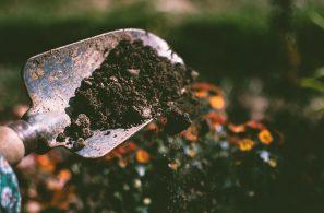 bulk-garden-supplies-1