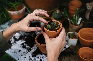bulk-garden-supplies-2